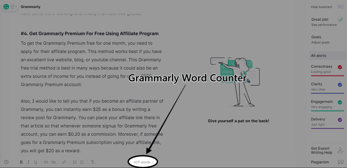 Grammarly Word Counter