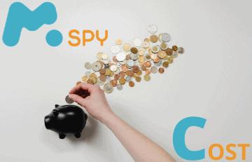 mSpy Cost