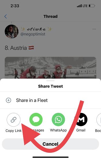 Share Twitter GIF Via iPhone